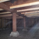 Sistered new floor joists to original joists to strengthen structure for tile installation.